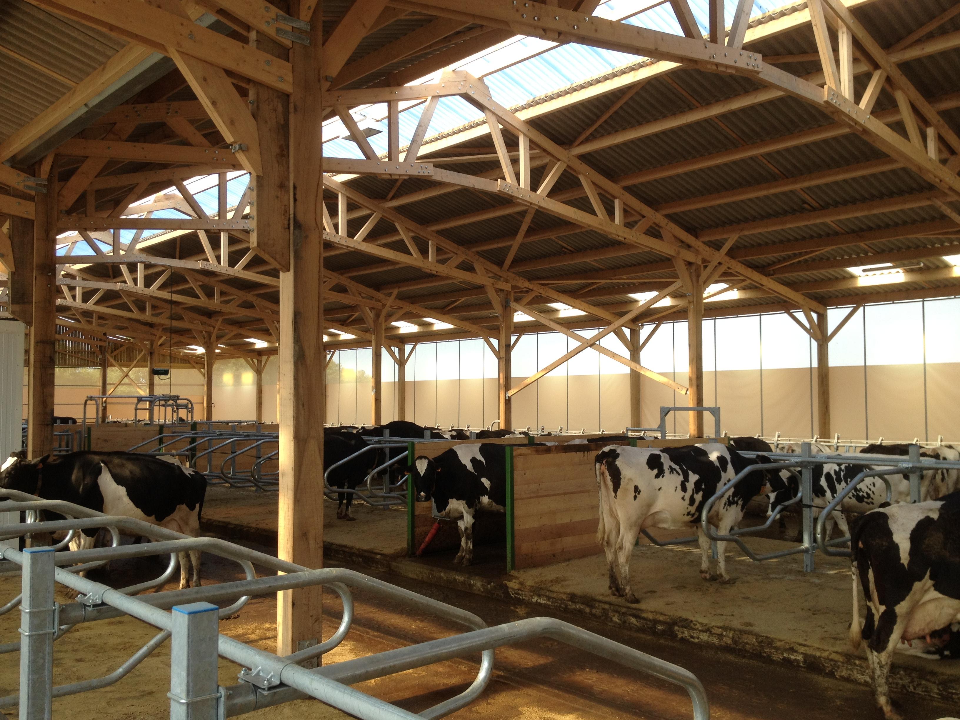 Rideaux Agricole : Filets rideaux et portes brise vent agricoles rcy