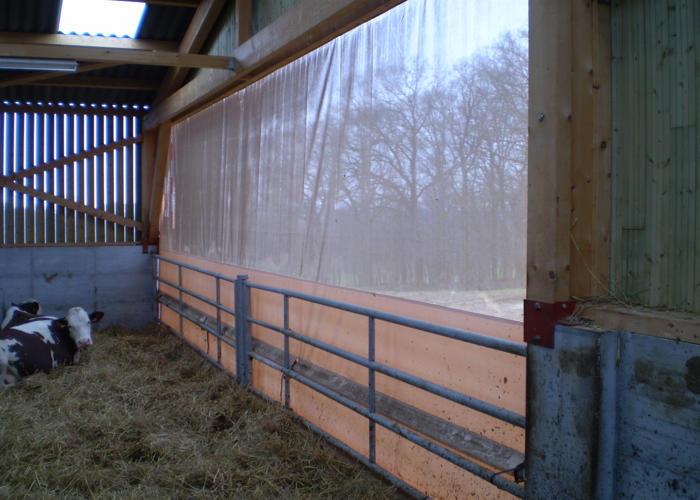 Rideau brise vent agricole Charolais