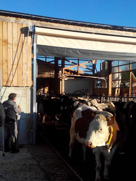 rideau-brise-vent-agricole-aubrac-chaine-1