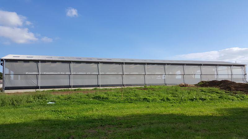 rideau-brise-vent-agricole-blond-aquitaine-1