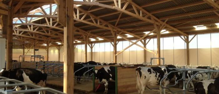 rideau-brise-vent-agricole-gascon-6